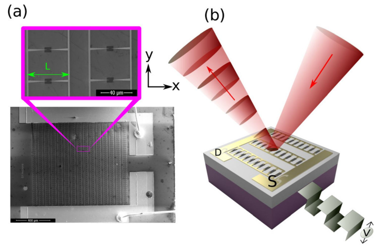 Graphene based plasmonic terahertz amplitude modulator operating above 100MHz