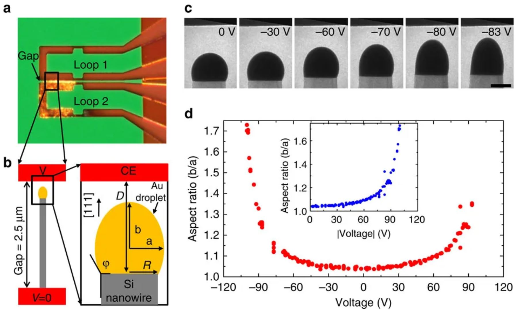 Controlling nanowire growth through electric field-induced deformation of the catalyst droplet