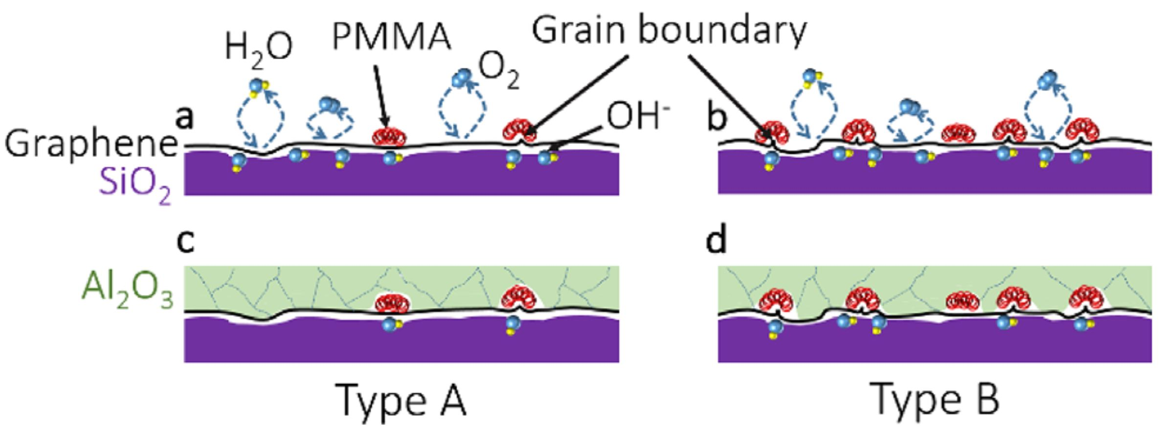 Electronic properties of CVD graphene: The role of grain boundaries, atmospheric doping, and encapsulation by ALD