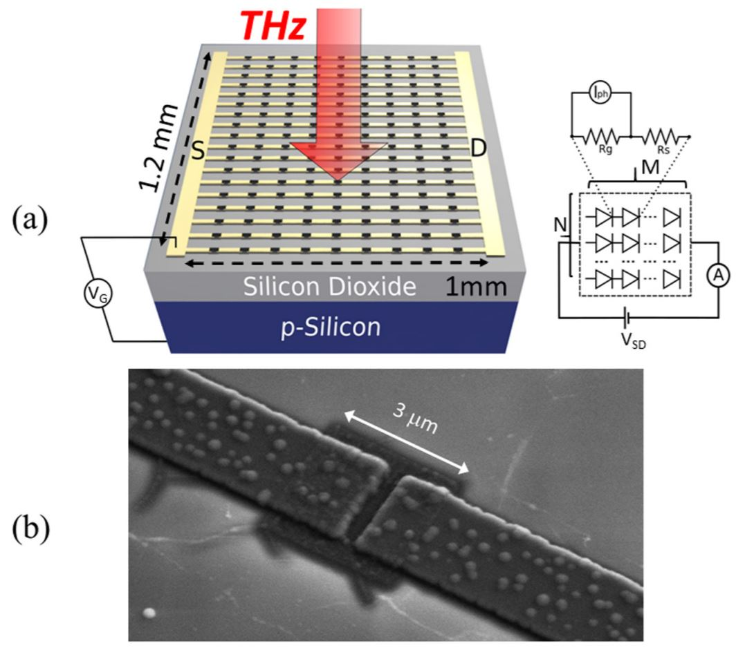 Bolometric detection of terahertz quantum cascade laser radiation with graphene-plasmonic antenna arrays