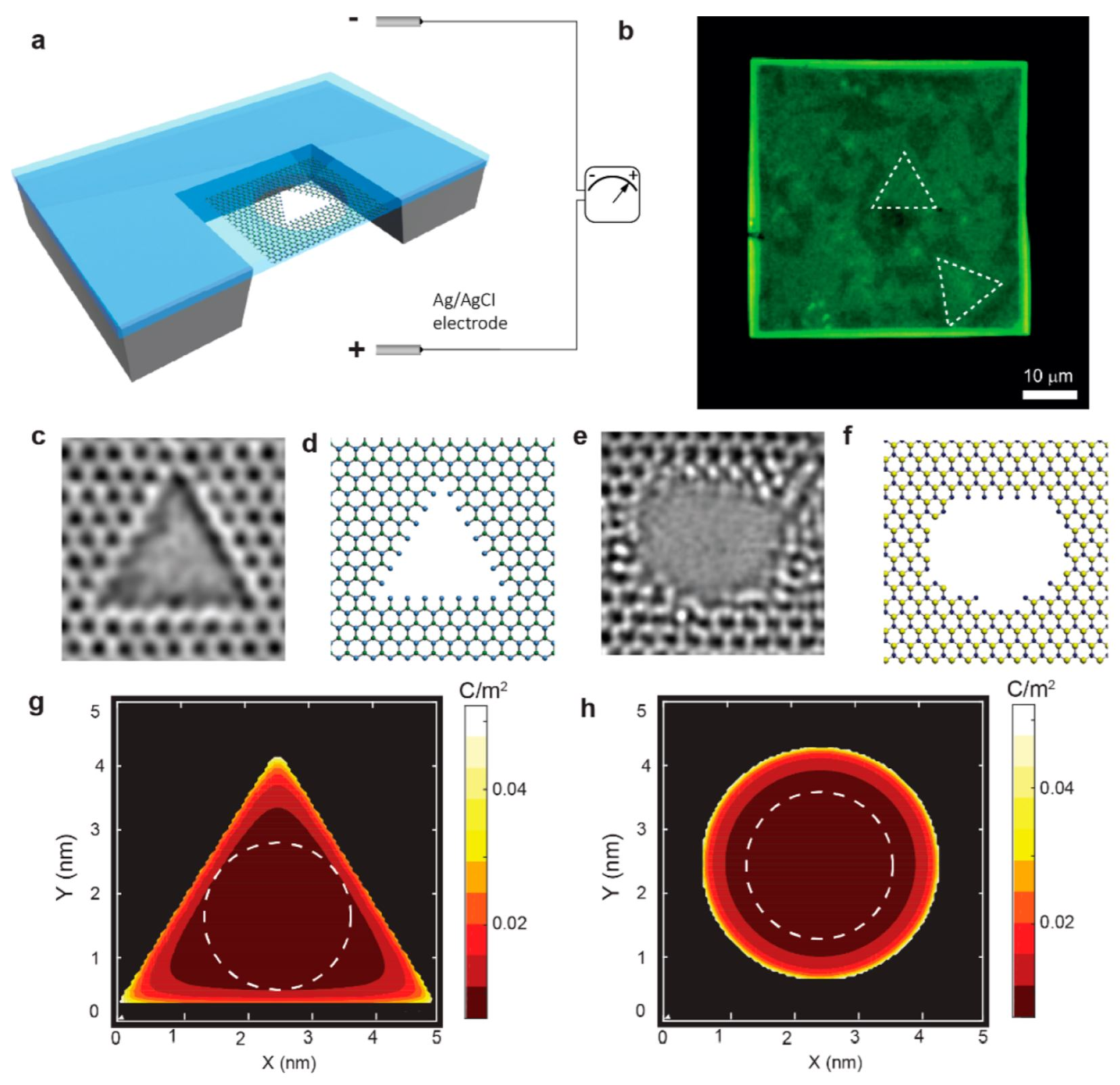 Geometrical Effect in 2D Nanopores