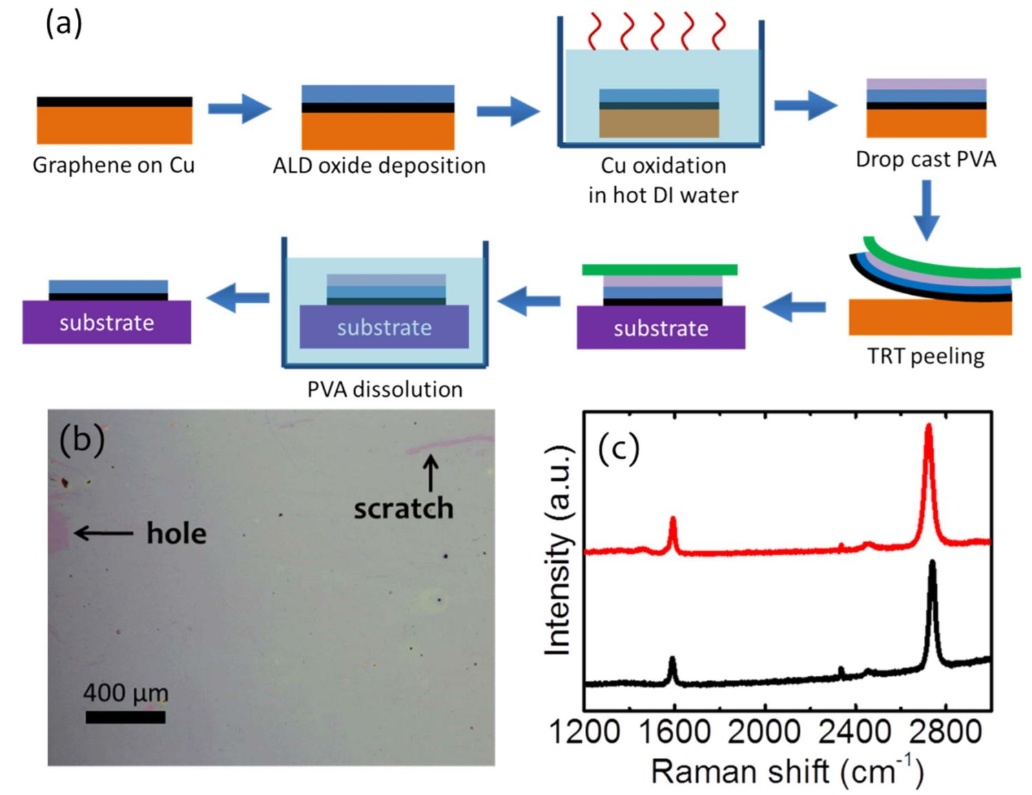 Atomic layer deposited oxide films as protective interface layers for integrated graphene transfer