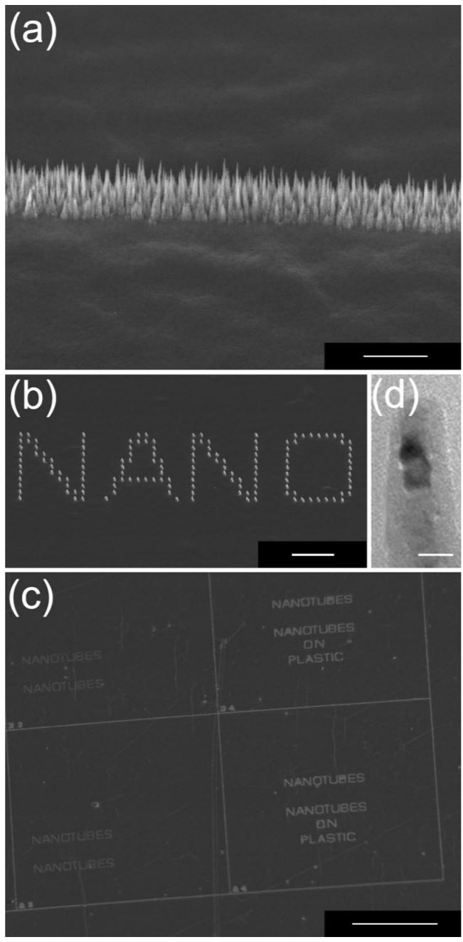Direct growth of aligned carbon nanotube field emitter arrays onto plastic substrates