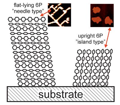 Effects of polymethylmethacrylate-transfer residues on the growth of organic semiconductor molecules on chemical vapor deposited graphene