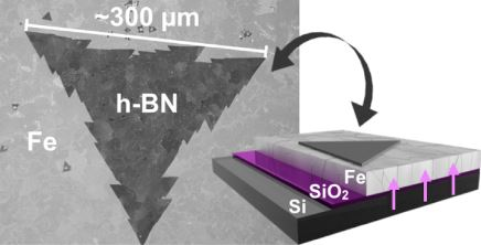 Nucleation Control for Large, Single Crystalline Domains of Monolayer Hexagonal Boron Nitride via Si-Doped Fe Catalysts