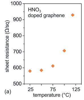 Organic light emitting diodes with environmentally and thermally stable doped graphene electrodes†