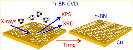 In Situ Observations during Chemical Vapor Deposition of Hexagonal Boron Nitride on Polycrystalline Copper