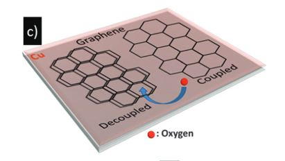 The influence of intercalated oxygen on the properties of graphene on polycrystalline Cu under various environmental conditions
