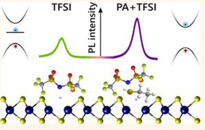 Rational Passivation of Sulfur Vacancy Defects in Two-Dimensional Transition Metal Dichalcogenides