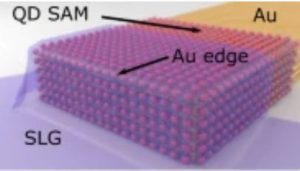 High-yield parallel fabrication of quantum-dot monolayer single-electron devices displaying Coulomb staircase, contacted by graphene