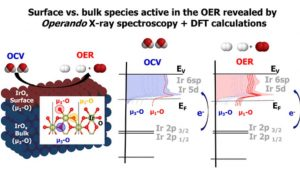 Surface Electron-Hole Rich Species Active in the Electrocatalytic Water Oxidation